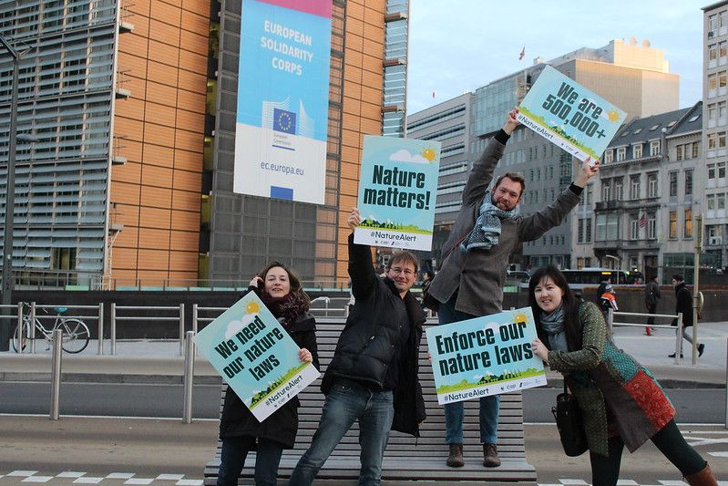 Nature Alert action December 7th - (c) Friends of the Earth Europe